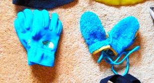 THE NORTH FACE 手袋