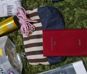 手作りポーチとモバイルバッテリー