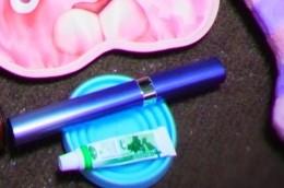 ポケットドルツと歯磨きの仲間たち